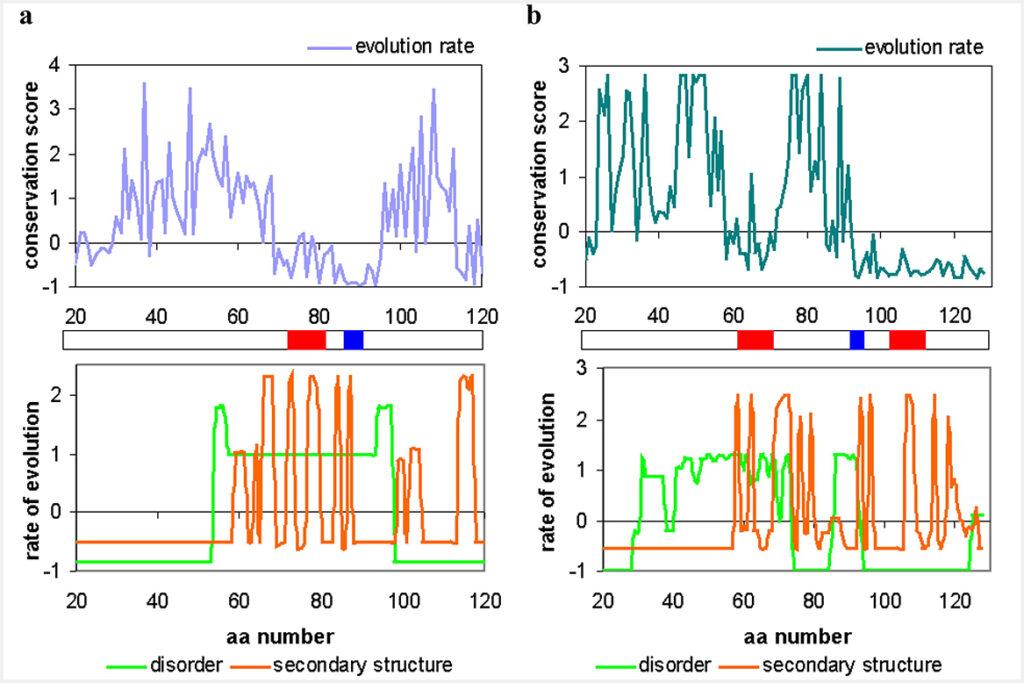 В ИК РАН методами МYPP выполнен подробный анализ незрелых нейротрофинов